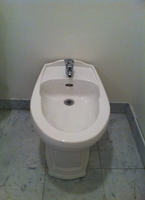My glorious bidet!